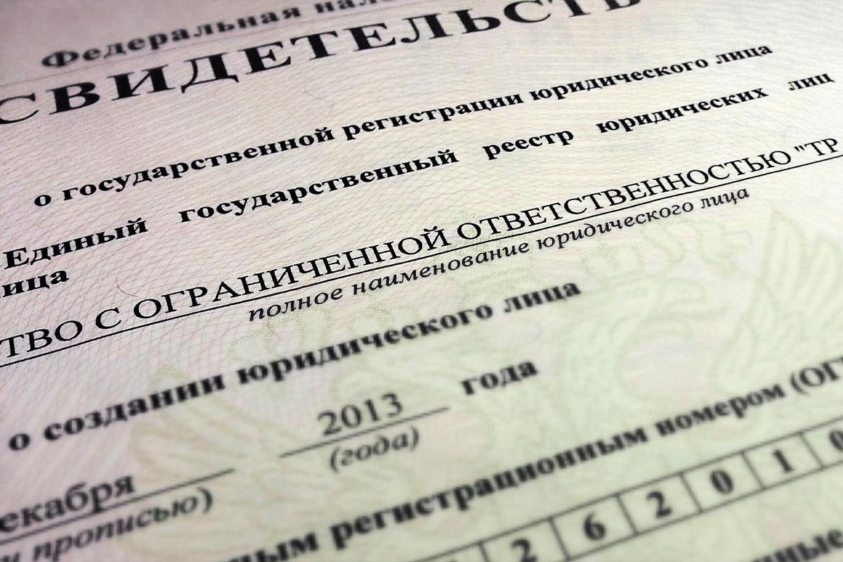 Внесение изменений в Устав и ЕГРЮЛ